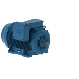 weg-ac-motors-general-purpose