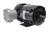 weg-dust-ignition-proof-motors