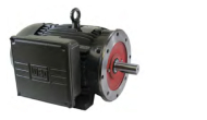 weg-general-purpose-odp-tefc-electric-motors