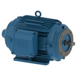 AC Motors - IEC